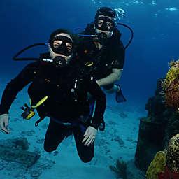 Scuba Dive Cancun's Underwater Museum by Spur Experiences®