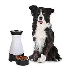 PetSafe® Medium Healthy Pet Food Station™ in White/Black