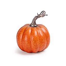 Decorative Mini Fall Assorted Pumpkins