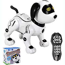 Contixo R3 Robot Dog Toy