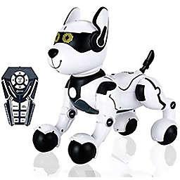 Contixo R4 IntelliPup Robot Dog