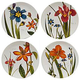 Certified International Botanical Floral Dinner Plates (Set of 4)