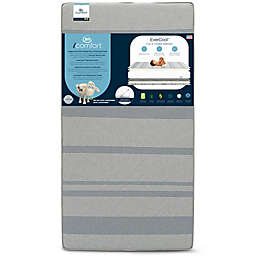 Serta® iComfort® EverCool Crib and Toddler Mattress