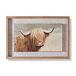 Clyde Framed Canvas Wall Art