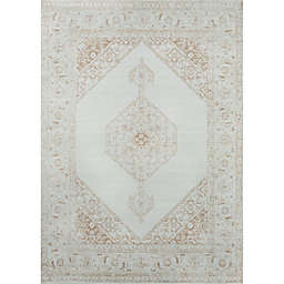 Momeni Isabella 7'10' x 10'6' Area Rug in Brown