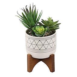 Flora Bunda 10.25-Inch Artificial Succulents in Ceramic Pot in White/Black