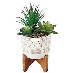 Flora Bunda 5.3-Inch Faux Succulent Arrangement with White/Gold Ceramic Pot and Wood Stand