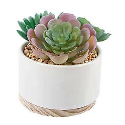 Flora Bunda 5-Inch Artificial Succulent Mix in Ceramic Pot