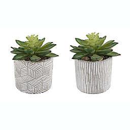 Flora Bunda Artificial Succulent Arrangement in Patterned Cement Pot (Set of 2)