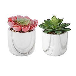 Flora Bunda Artificial Succulent Arrangement in Marble Pot (Set of 2)