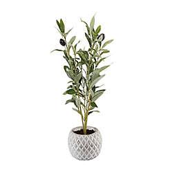 Flora Bunda 14-Inch Artificial Olive Branch Arrangement in Cement Pot