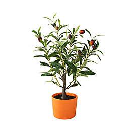 Flora Bunda 18-Inch Artificial Olive Tree in Terra Cotta Pot in Orange