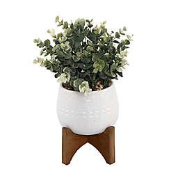 Flora Bunda 11.5-Inch Artificial Eucalyptus in Mayan Ceramic Planter with Wood Base