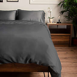 Natural Home Rayon Made From Bamboo King Duvet Cover in Pewter
