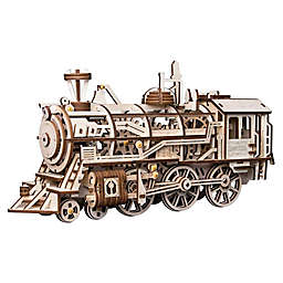 Locomotive DIY 3D Wooden Moving Gears Kit