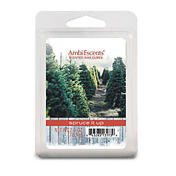 AmbiEscents™ Spruce it Up 6-Pack Wax Fragrance Cubes