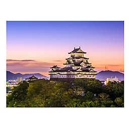 Wuundentoy USA Himeji Castle, Japan 500-Piece Jigsaw Puzzle