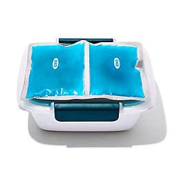 OXO Prep & Go Reusable Ice Packs (Set of 2)<br />