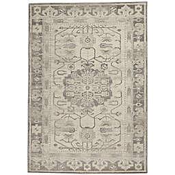 Nourison Cyrus Ornamental Border Indoor Area Rug in Ivory/Grey