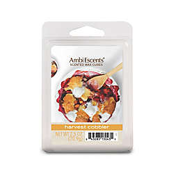 AmbiEscents™ Harvest Cobbler Scented Wax Cubes (Pack of 6)
