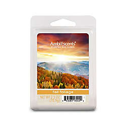 AmbiEscents™ Fall Foliage Scented Wax Cubes (Pack of 6)