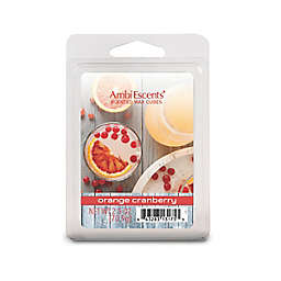 AmbiEscents™ Orange Cranberry 6-Pack Scented Wax Cubes in Red