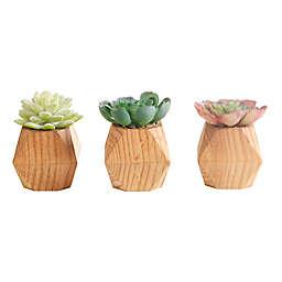Flora Bunda Artificial Succulent Arrangement in Wood Pot (Set of 3)