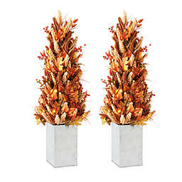 36-Inch Pre-Lit Fall Porch Trees with Iron Containers (Set of 2)