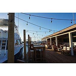 Aruba Art, Beach, and Sunset UTV Tour by Spur Experiences®