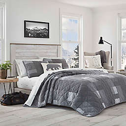 Eddie Bauer® Swiftwater Reversible 2-Piece Twin Quilt Set in Charcoal