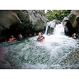 Puerto Rico El Yunque Rainforest and Bio Bay Tour by Spur Experiences®
