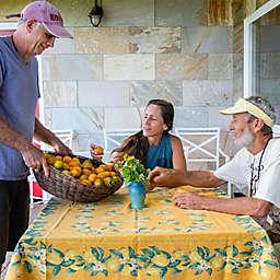 Lokahi Guided Farm Tour  by Spur Experiences® (Big Island, Hawaii)
