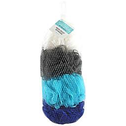 Spa Body by Swissco® 4-Piece Mesh Body Sponges in Net Bag