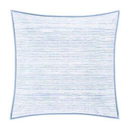 Oscar/Oliver Franco European Pillow Sham in Powder Blue