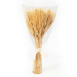 Bee & Willow™ 35-Inch Wheat Bundle Decorative Centerpiece in Yellow