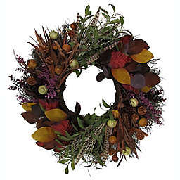 Bee & Willow™ 24-Inch Olive Wreath