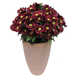 Bee & Willow™ 28-Inch Large Zinnia Floral Arrangement with Cement Pot in Burgundy