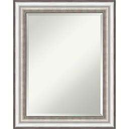 Amanti Art 23-Inch x 29-Inch Salon Framed Wall Mirror in Silver