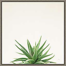 Succulent Simplicity I Neut 16-Inch Square Framed Wall Art