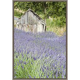 Lavender Field 16-Inch x 23.25-Inch Framed Wall Art