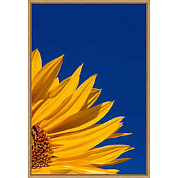 Sunflower and Blue Sky 16-Inch x 23.25-Inch Framed Wall Art