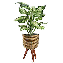 LCG Floral 28-Inch Faux Hosta Plant with Brown Basket Stand