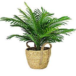 LCG Floral 24-Inch Faux Phoenix Palm with Brown Boho Basket