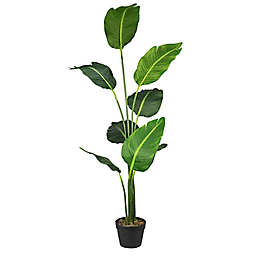 LCG Floral 60-Inch Bird of Paradise in Black Pot