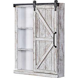 FirsTime & Co.® Winona 28-Inch x 21-Inch Farmhouse Barn Door Cabinet Wall Mirror in White