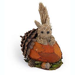 Boston International Dale Squirrel in Acorn Decorative Figurine in Orange