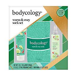 Bodycology® Winter Coconut 3-Piece Warm & Cozy Sock Set