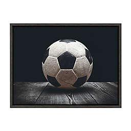 DesignOvation Sylvie Vintage Soccer Ball Framed Canvas Wall Art