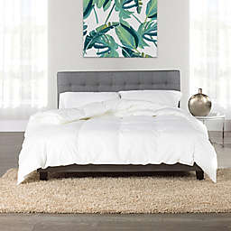 Canadian Hutterite Goose King Down Comforter in White