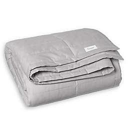 Casper® 20 lb. Weighted Blanket in Grey